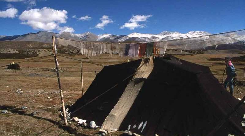 Black Tents of Kedar